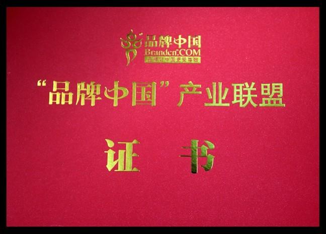 中国卓越品牌风云榜