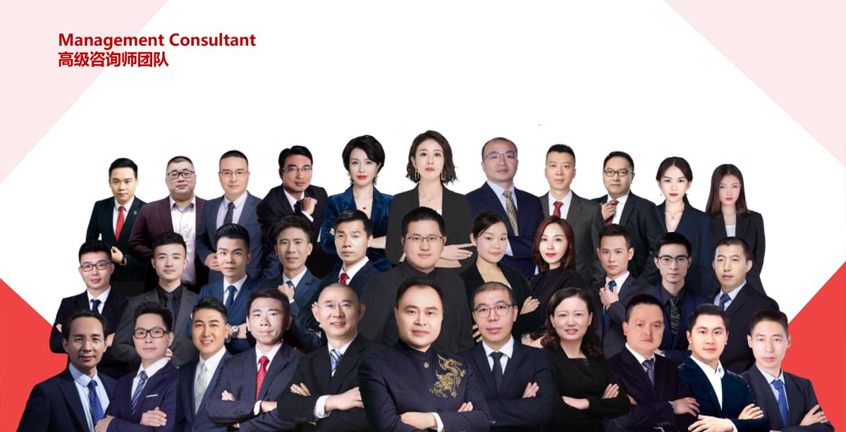 高级咨询师团队